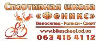 Спортивная школа «Феникс»