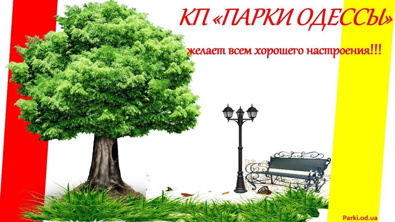 КП Парки Одессы
